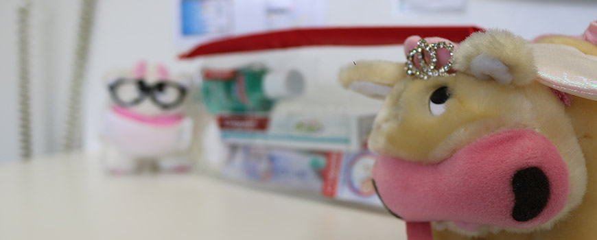 Dental Toys for Kids